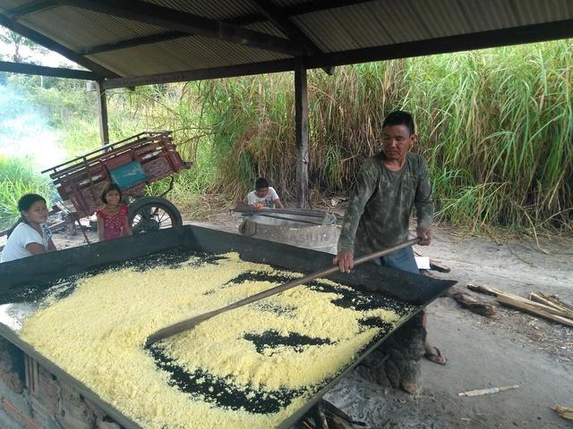 Kujubim man making 'water flour' (farinha d'água) at the Ricardo Franco Village. Photo: Gabriel Sanchez, 2018.