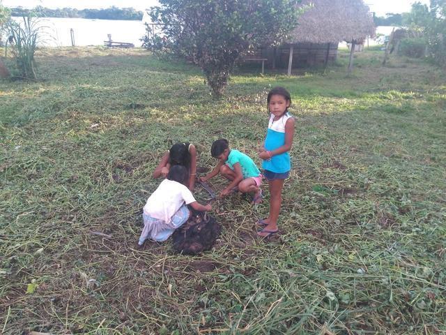 Meninas coletando batatas. Foto: Gabriel Sanchez, 2018